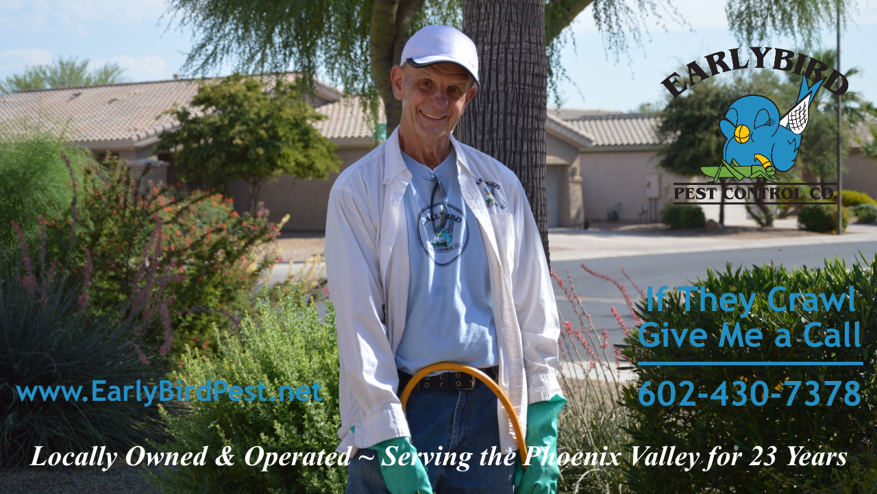Early Bird Pest Control exterminator in Phoenix Arizona North Scottsdale Paradise Valley Goodyear Peoria AZ