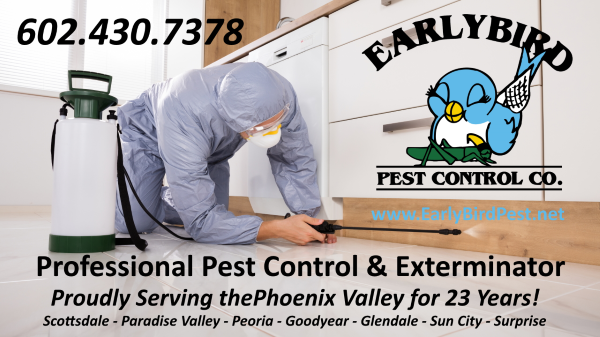 North Scottsdale Paradise Valley Phoenix Goodyear Peoria Surprise AVondale Pest Control Exterminator