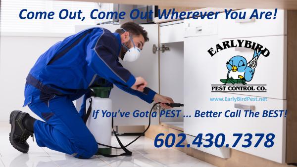 Phoenix, Litchfield Park, North Scottsdale, Paradise Valley, Goodyear, Peoria Arizona Pest Control exterminator