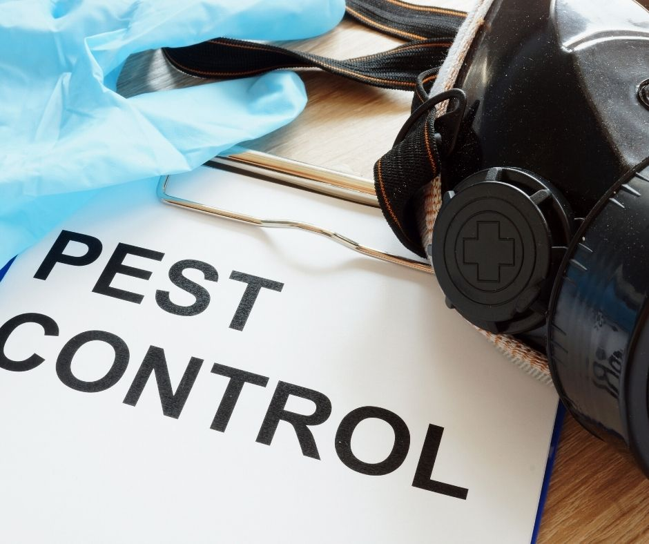 Three Types of Pest Control