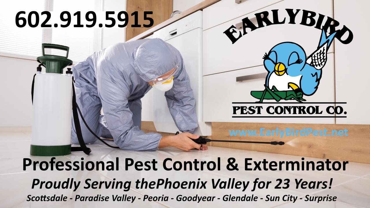 Phoenix Valley Pest Control exterminator service Phoenix and Scottsdale Arizona