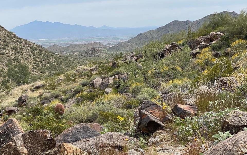 White Tank Regional Park Surprise, Arizona
